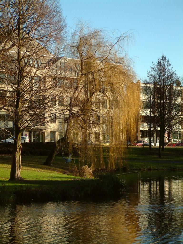 Lake in Arnhem
